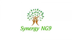 Synergy NG9